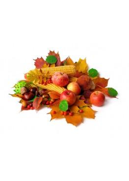 Жидкость Aviator Autumn Harvest 30мл